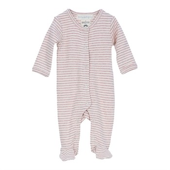 Serendipity Newborn Suit Powder/Ecru